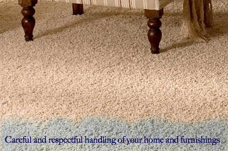 Carpet Steam Cleaning, Carpet Shampooing, Carpet Repair And Stain Removal