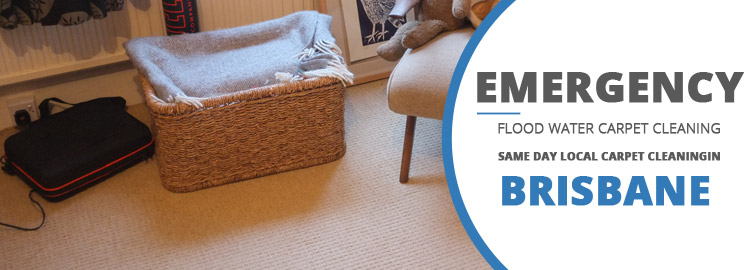 Emergency Carpet Cleaning West Burleigh