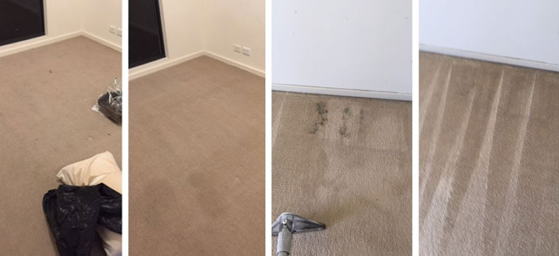 Carpet Steam Cleaning Before After