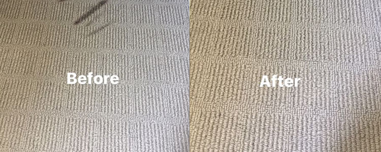 Carpet Steam Cleaning Waterfall