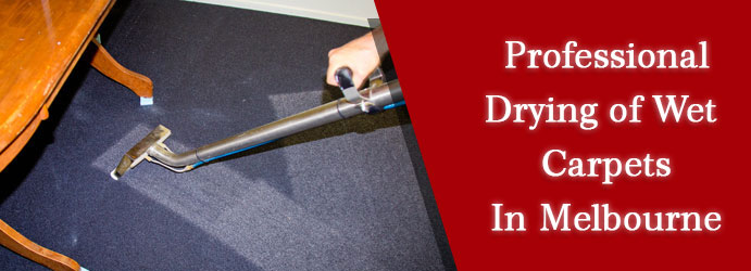 Drying Of Wet Carpets
