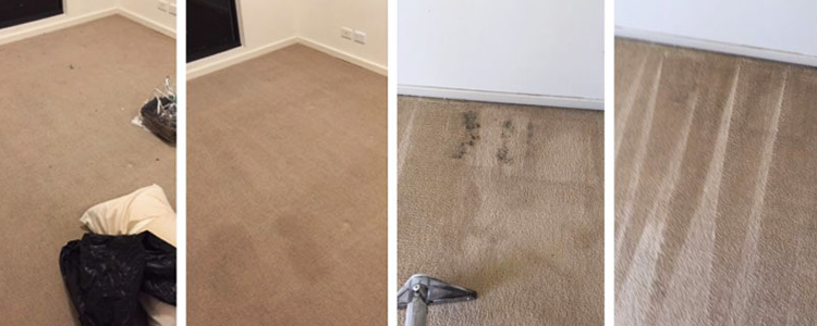 Carpet Cleaners Virginia