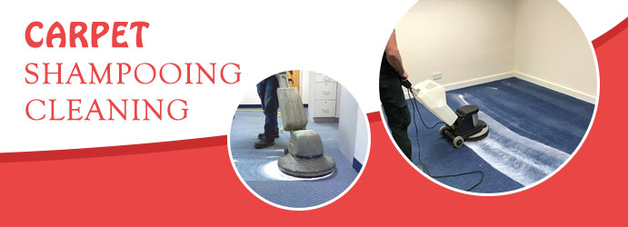Carpet Shampooing Cleaning Brisbane