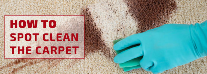 How to spot clean the carpet