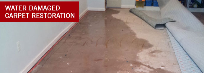 Water Damaged Carpet Restoration Gordon