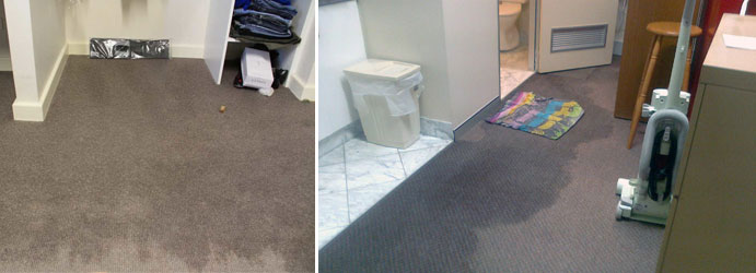 Wet Carpet Drying Exford