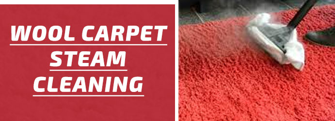 Wool Carpet Steam Cleaning Melbourne