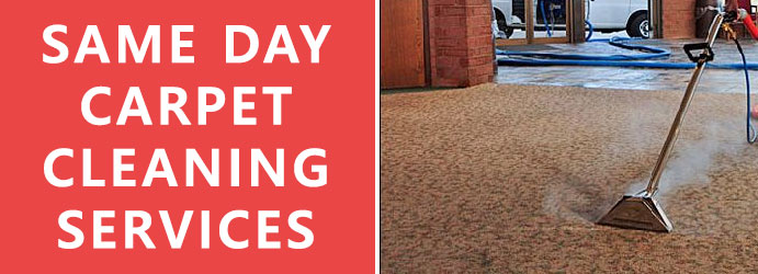 Same Day Carpet Cleaning Services Brisbane