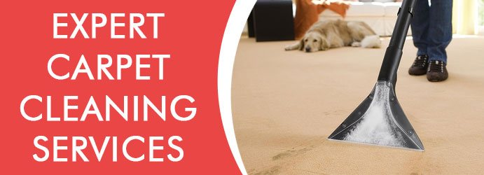 Carpet Cleaning Perwillowen