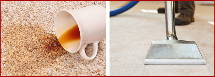 Carpet Stain Removal Cleaning Service