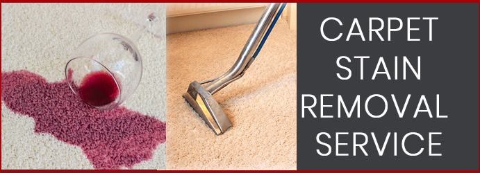 Carpet Stain Removal Cleaning