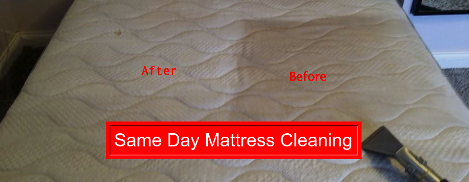 Professional Mattress Cleaning Eglinton