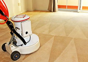 Dry Carpet Cleaning Bulldog