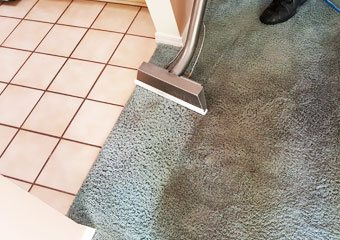 Hot water extraction Carpet Cleaning Palmtree
