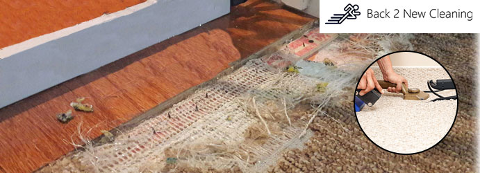 Carpet Stretching Haberfield