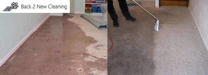 Carpet Water Damage Restoration Syndal