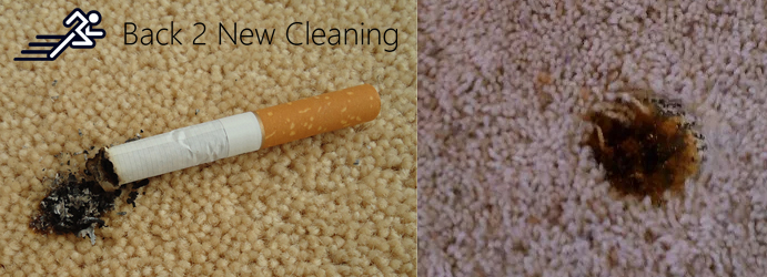 Carpet Burn Repair Ironbark