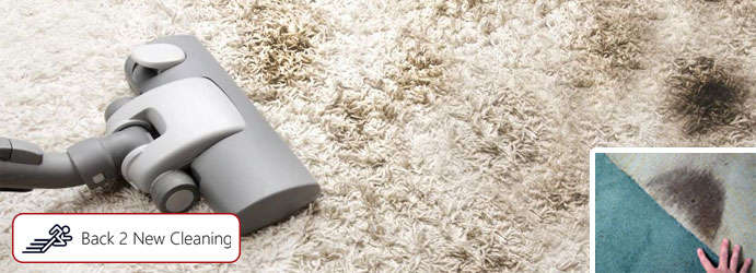 Carpet Mould Removal Oakville