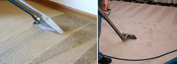 Carpet Sanitization Cross Roads