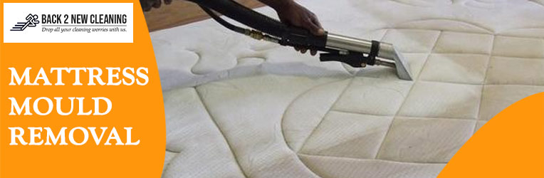 Mattress Mould Removal