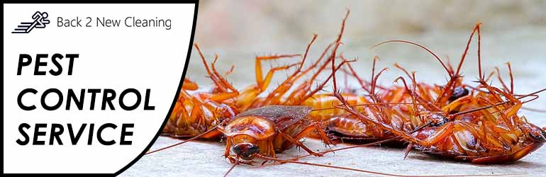 Pest Control Brownsville