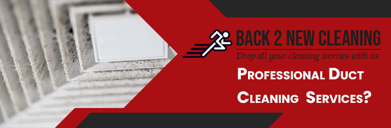 Professional Duct Cleaning Service