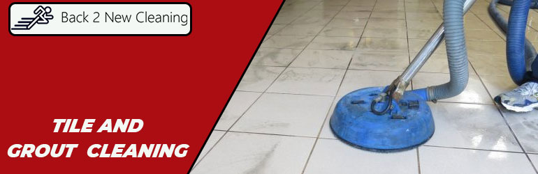 Tile and Grout Cleaning Service