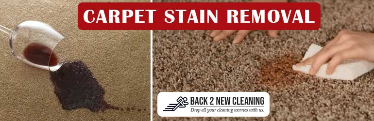 Carpet Stain Removal Tarlee