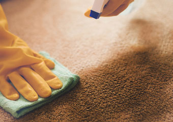Carpet Stain Removal Harman