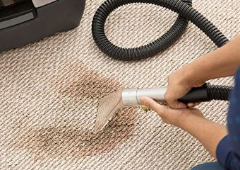 Carpet Stain Removal Glenorchy
