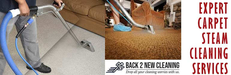 Expert Carpet Cleaning Woodstock