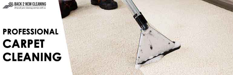 Professional Carpet Cleaning Chisholm