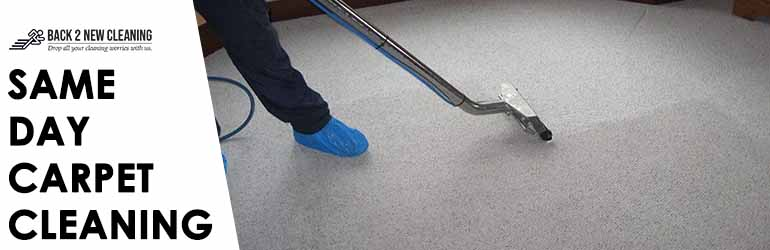 Same Day Carpet Cleaning Oaks Estate