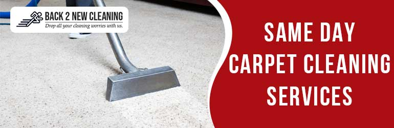 Same Day Carpet Cleaning Services in Belmont