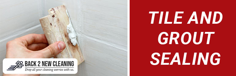 Tile and Grout Sealing Tomewin