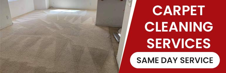 Carpet Cleaning Palmtree