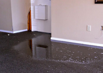 Carpet Flood Water Damage Restoration Boondooma