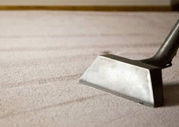 Eco-Friendly & Safe Carpet Cleaning Services Bulldog