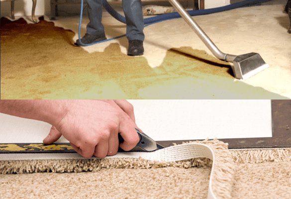 Carpet Water Extraction And Carpet Repair Service