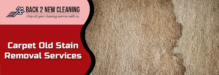 HOW TO GET RID OF OLD STAINS ON THE CARPET