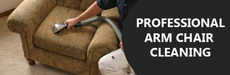 PROFESSIONAL ARM CHAIR CLEANING