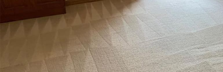 Carpet Cleaning Sunshine