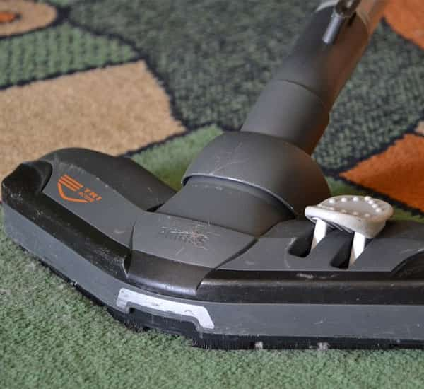 Professional [Carpet Cleaning Services