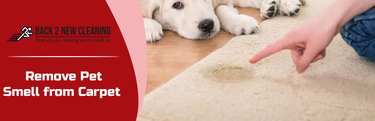 REMOVE PET SMELL FROM CARPET