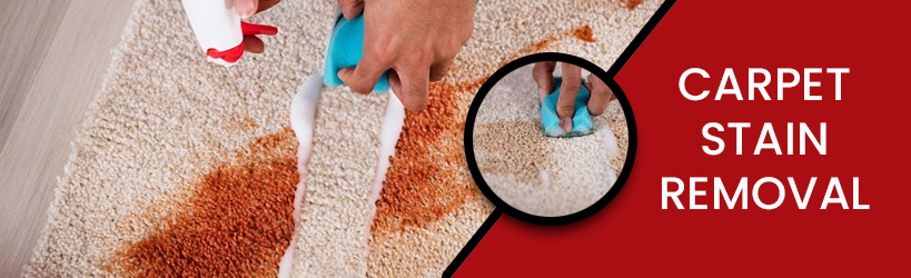 Carpet Stain Removal Toowoomba