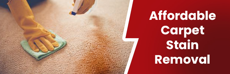 Affordable Carpet Stain Removal