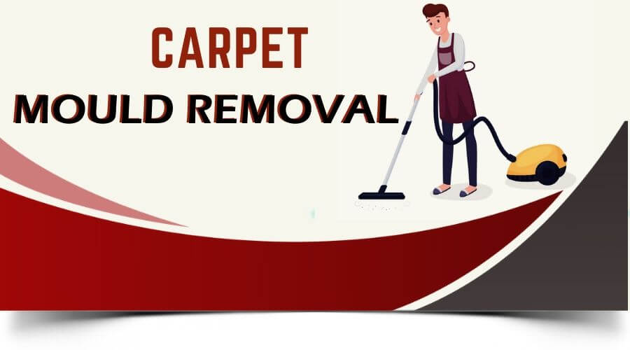 carpet mould removal Coorparoo