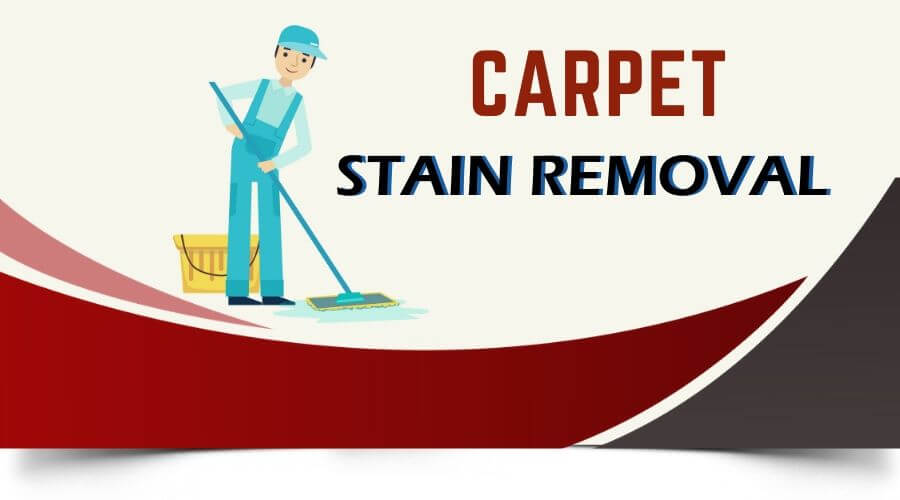 carpet stain removal Coorparoo
