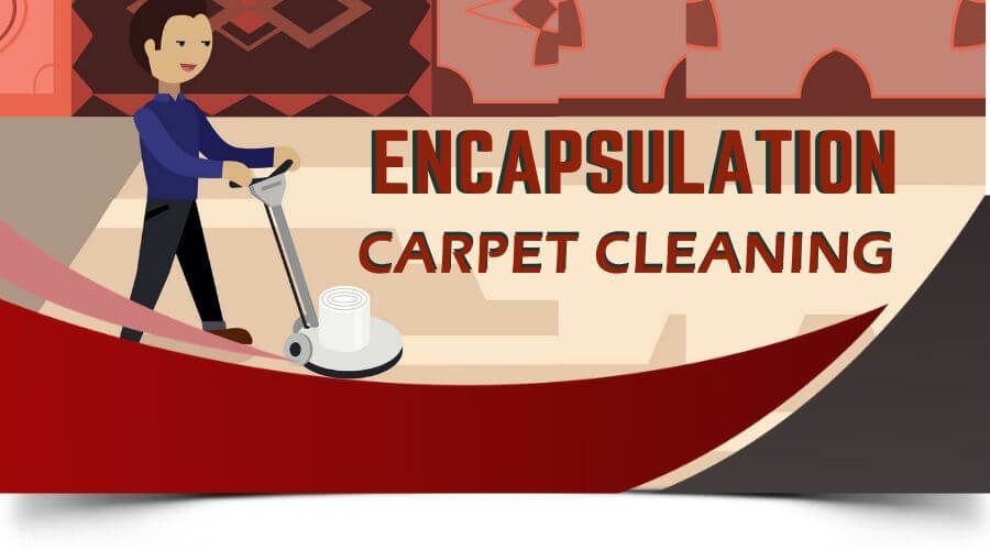 encapsulation carpet cleaning Coorparoo