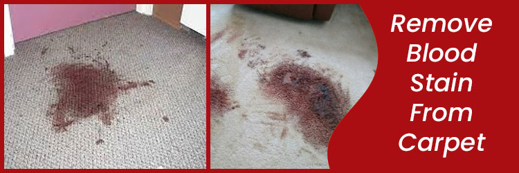 Remove Blood Stain From Carpet